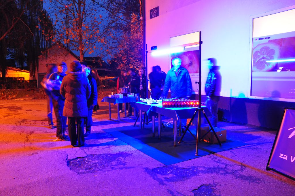Moj Buševec za Vukovar: Da se ne zaboravi, 2013